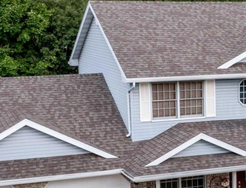 Tips For Shingle Roof Maintenance
