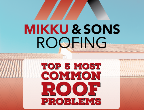 Top 5 Most Common Roof Problems